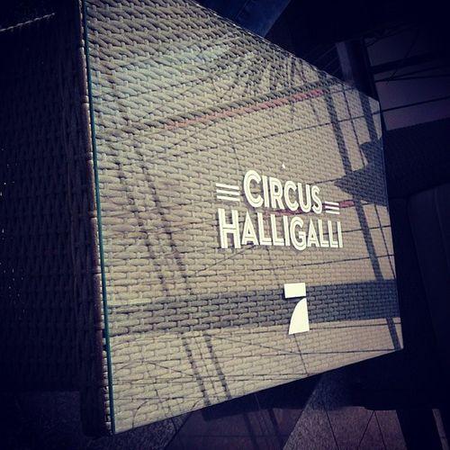Circushalligalli  jokowinterscheidt Klaasheuferumlauf