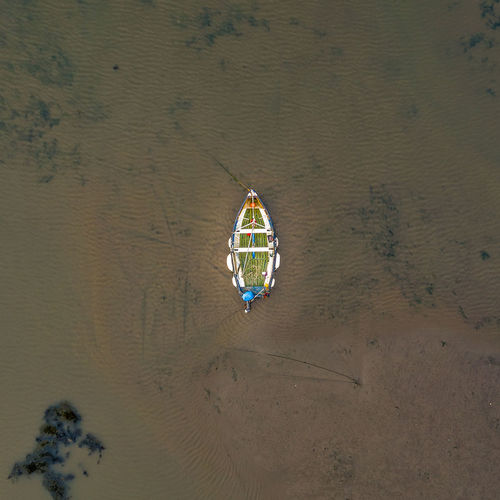 High angle view of umbrella on beach