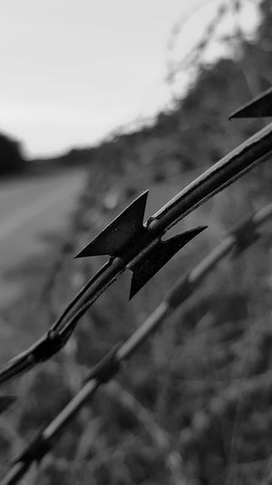 No People Outdoors Close-up Macro Causeway Rampart Hungarian Border Wire Fence Fence Border Migration Migrating Photography Sharp Blade Steel