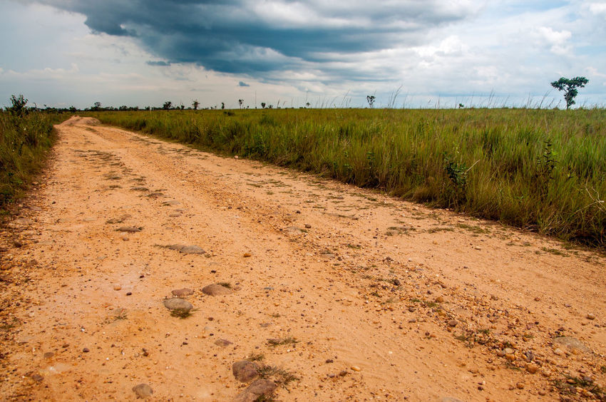 A dirt road built by FARC rebels in the Colombian plains Agriculture Cloud Colombia Countryside Day Dirt Farc Field Grass Green Guerrilla Landscape Macarena Meta Nature Outdoors Plains Rebel Road Rural Rural Scene Scenic Sky Sunny Travel