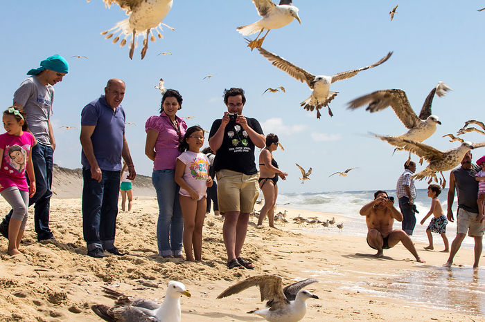 Beach Photography Beachphotography Enjoyment Fishing Fotograf Fun Hitchcock Life Is A Beach Mare Move People Watching Peoplephotography Portugal Sea Seagulls Strand Taking Photos Tourist Attraction  Viera
