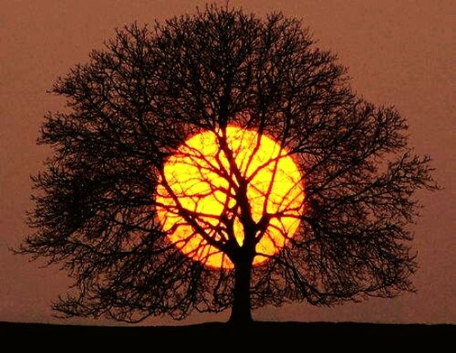 A magestade o Sol! Relaxing Hello World