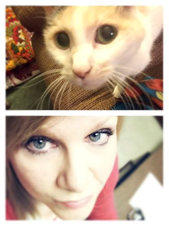 Lookalike Cat Eyes Do I Look Like My Cat? Pet Owner Lookalikes Just For Fun I know they say dog owners look like their dogs but also cat owners , don't you think ? Me And My LiliBug Petowners tag your cat owner friends in the new album 🐱