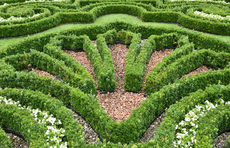Beauty In Nature Day Design Formal Garden Garden Green Color Growth High Angle View Nature No People Ornamental Garden Park Pattern Plant Shape