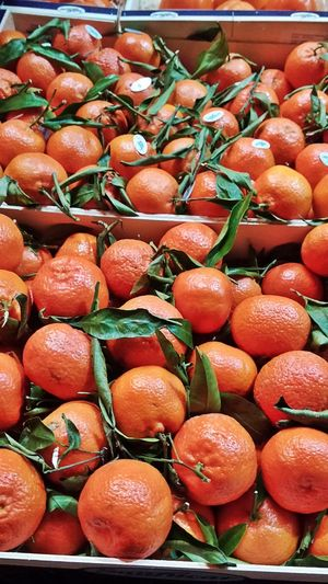 High angle view of oranges for sale
