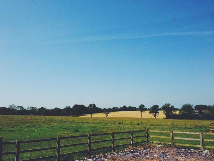 Bright day in the Milton Keynes countyside. Fence Landscape Tranquil Scene Blue Field Clear Sky Beauty In Nature Green Scenics Nature Rural Scene Non-urban Scene Countryside