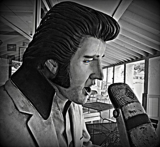 Elvis Presley HoundDog Ormond Beach Emotion Heartbreak Hotel  Microphone Portrait Sideburns