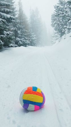 Snow Sports Winter Snow No People Cold Temperature Tree Day Outdoors Slovakia🇸🇰 Travel Scenics High Tatras :) Slovakia Nature Snowing Slovakia Close-up Beauty In Nature Nature Weather Snowflake Ball Volleyball