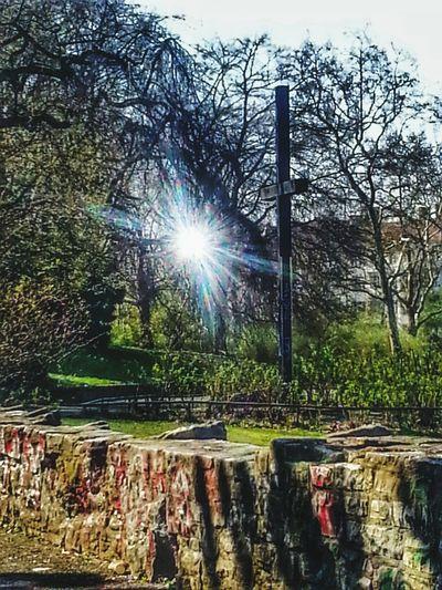 """sunday morning reflection"" Near And Far PhotoArt By Kitty Fischer Kreuzberg Getting Inspired"