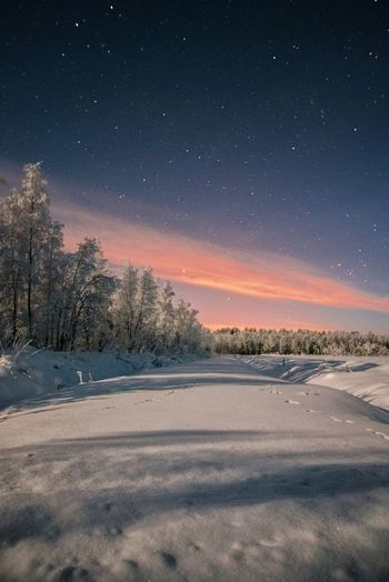 City lights against the clouds Sky Snow Winter Beauty In Nature Tree Tranquility Tranquil Scene Cold Temperature Night Nature Star - Space Landscape Astronomy Outdoors Nature_collection Scenics Horizon City Lights Taking Photos Freshness Check This Out Lapland, Finland Forest Cloud - Sky Moonlight