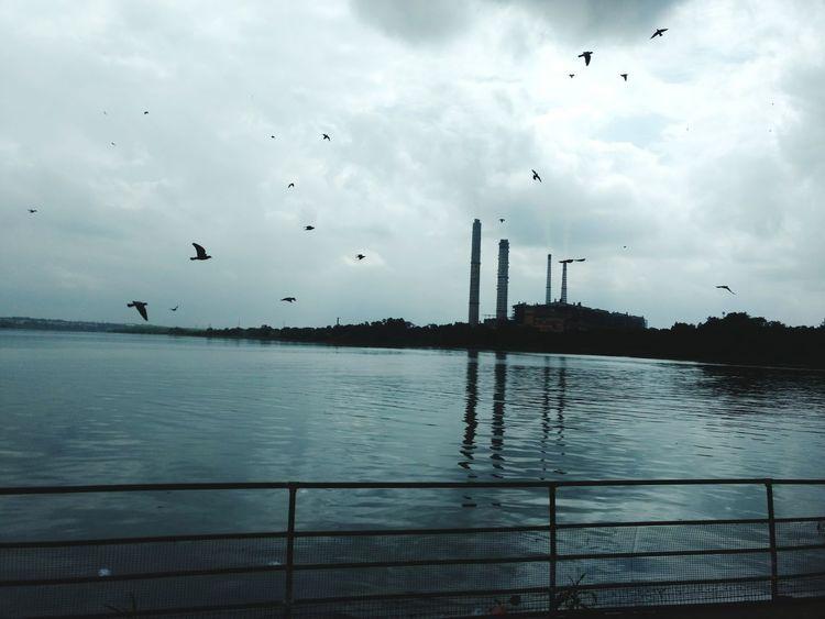 EyeEmNewHere Thermalpowerplant Flyingbirds Sky Cloud - Sky