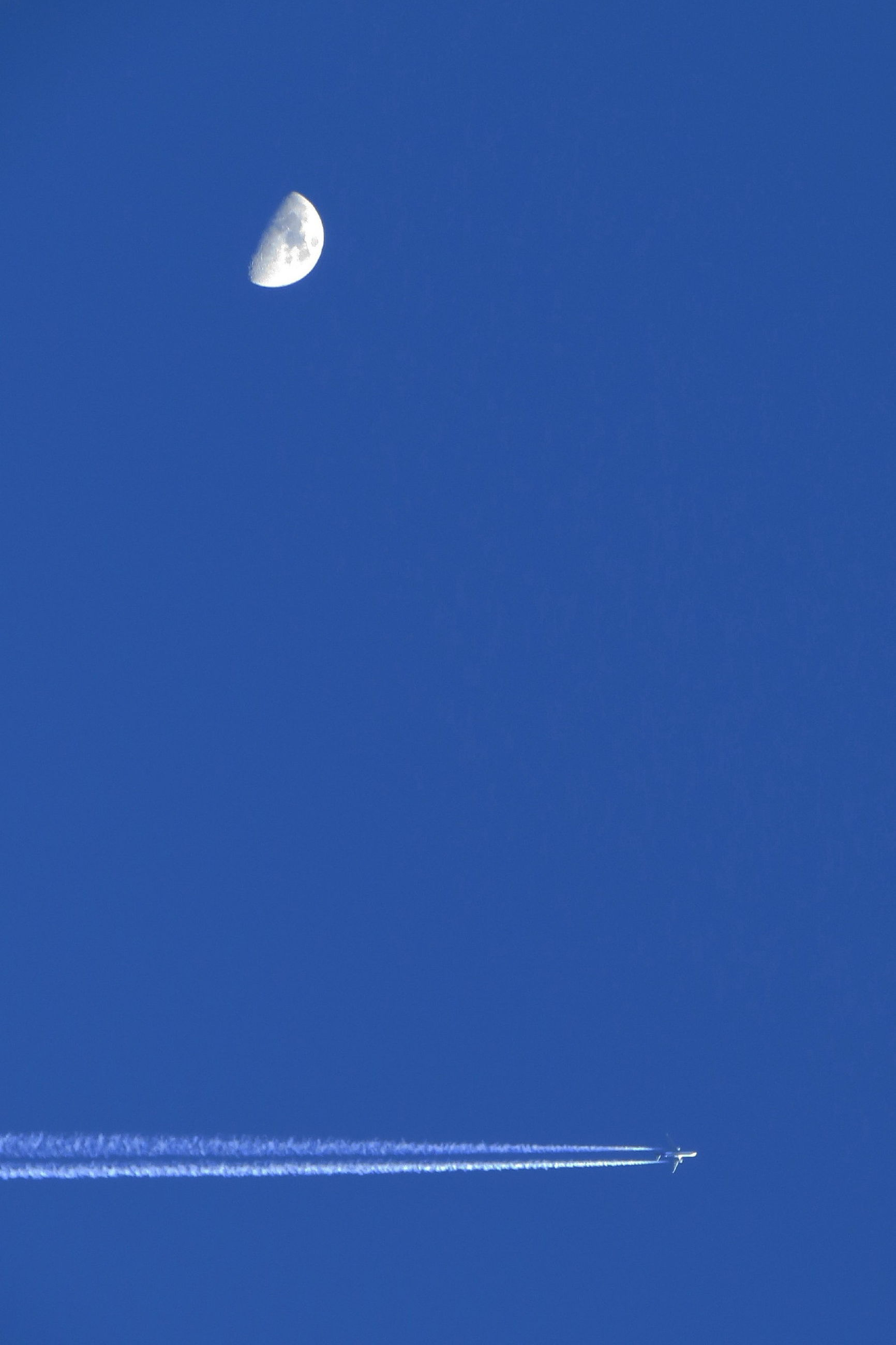moon, low angle view, clear sky, astronomy, blue, full moon, night, planetary moon, copy space, sky, space exploration, beauty in nature, scenics, nature, discovery, flying, tranquility, outdoors, half moon, tranquil scene