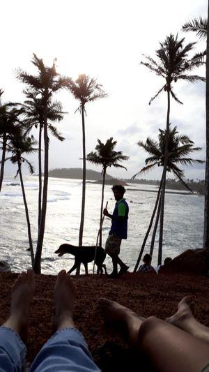 time of a sunset Coconuthill Mirissabeach SriLanka Srilanka Photography Travel #beach Tree Child Palm Tree Full Length Water Sea Beach Childhood Boys Sand