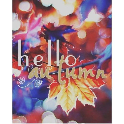 Hello and happy Autumn!🍂🍁🍃 Hellooctober Hellomonth Happyautumnfestival