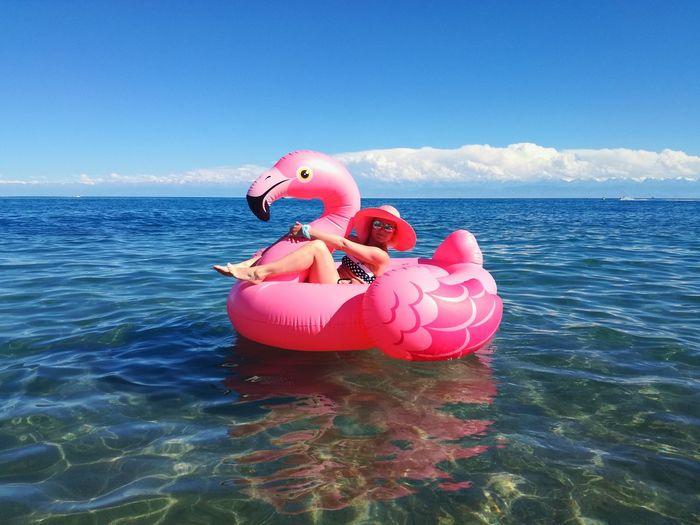 Swan floating on sea against sky
