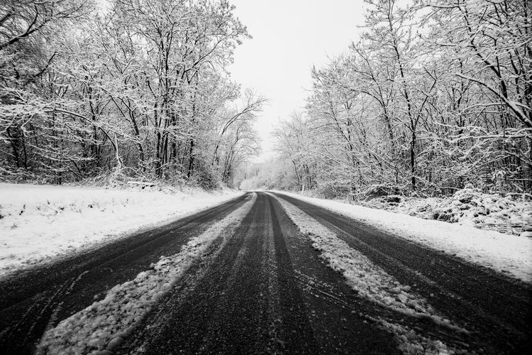 winter road with snow on the ground. travel in difficult way to enjoy the colder season. white image with black asphalt in contrast. drive and travel concept Asphalt Driving Bare Tree Beauty In Nature Careful Cold Temperature Danger Day Diminishing Perspective Direction Nature No People Outdoors Plant Road Scenics - Nature Snow Solitude The Way Forward Tranquil Scene Tranquility Transportation Tree vanishing point Winter