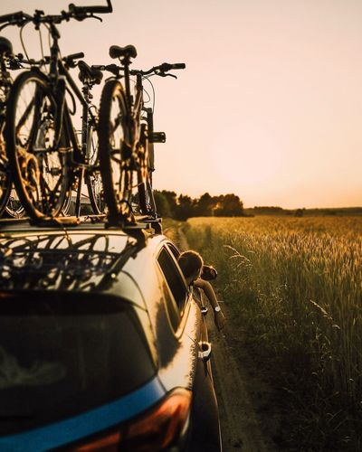 Bicycles by field on car roof during sunset