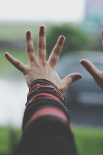 Let me be free. Let me taste the breath of fresh air. Let me imbibe the rain. I want to vanish from the circumscriptions of life. Human Hand Human Body Part Gesturing Hand Selective Focus Human Arm Outdoors One Person Freedom Calling Resist Fight Struggle EyeEmNewHere