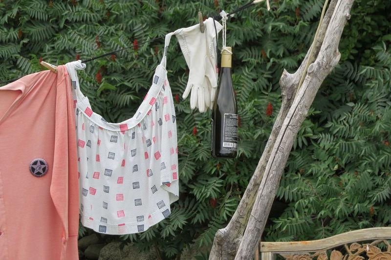 Wine Bottle Hanging On Clothesline Against Tree