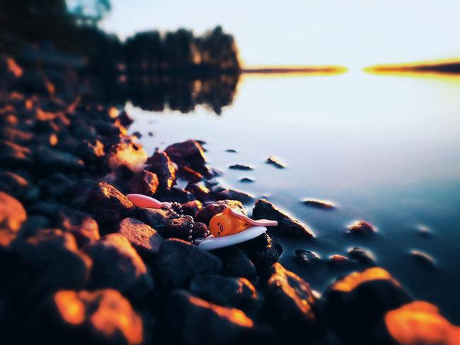 Sunset Landscape Cute Egg Finland Gudetama Scandinavia Lake View EyeEm Nature Lover EyeEm Best Shots