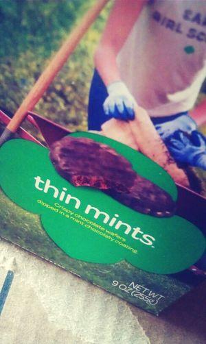 Yummmmm... Thin Mints c: ♥