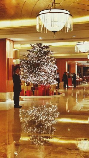Lotte Hotel_seoul Classy Christmas Tree Reflections