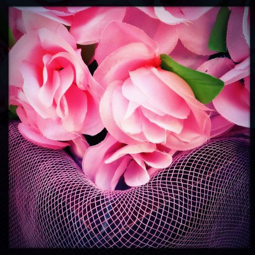 Flowers Pink Show Us Your Thirty