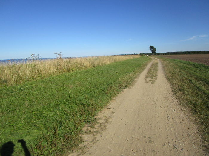 Dirt Road Passing Through Field Against Clear Blue Sky