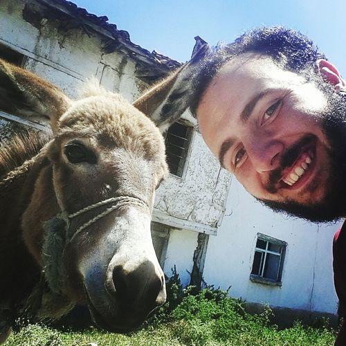 Hoşaftan anlarmısın dedim anlarım dedi. Şaşırdım ve poz vermesini istedim. Tartışılan soruyu cevapladığı için teşekkürü borç bilirim. Donkey Funny Open Edit OpenEdit