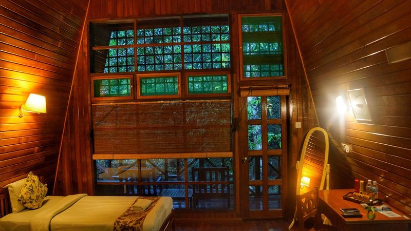 Indoors  Window Chair Illuminated No People Architecture Day Tabin Wildlife Reserve Tabin Wildlife Resort Tabin Lahad Datu Rainforest Borneo Sabah Malaysia Accommodation Resort Interior Design Wood - Material River Lodge Lodge Jungle Forest Built Structure Architecture