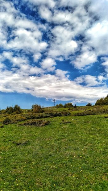 Blue Sky And Clouds Forest Hasmas Mountains Mountains And Valleys Dandelion Dandelions Yellow Flower Prairie Healthy Clouds And Sky Spring Flowers Light And Shadow Rural Scene Agriculture Field Water Sky Grass Landscape Cloud - Sky Farmland