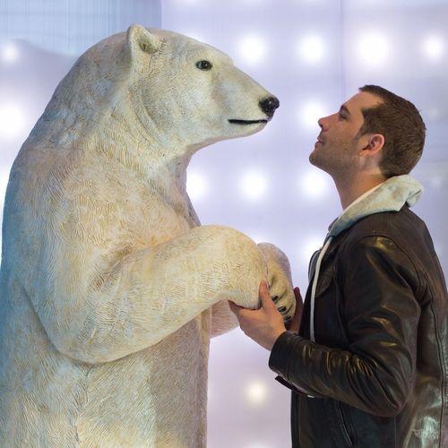 L'ours Et Moi