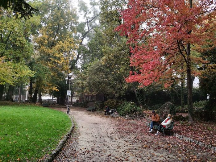 People sitting in park during autumn
