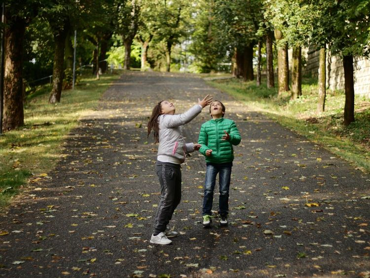 Childhood Children Children Photography Playing Winterfall Outdoors Photograpghy  Woods Leaves Happy Two Boys And Girls