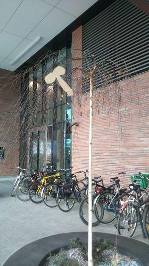 Bicycle Transportation Mode Of Transport City Architecture Day Gdańsk 👌🏼 Gdańskeye Gdansk, Poland Gdansk 2016 Polska Poland Poland Polskajestpiekna Poland 💗 Polska Natura Polska Samsungphotography Beauty In Nature