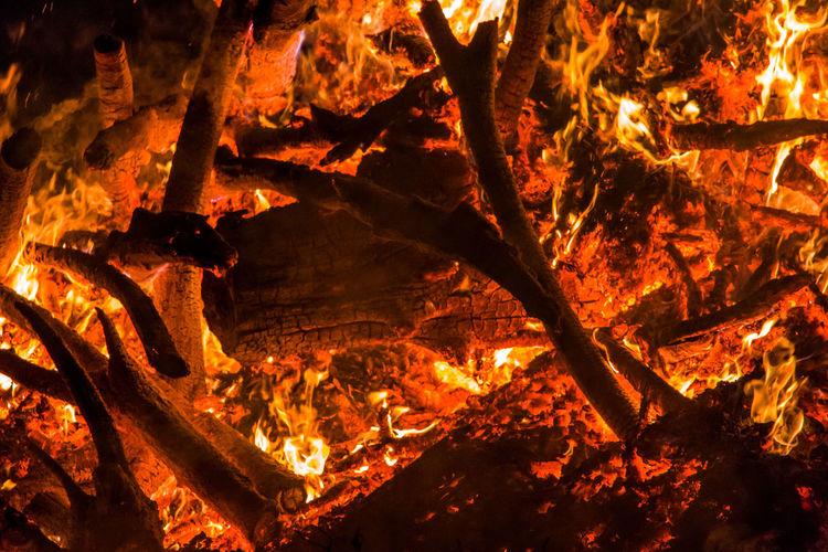 Full frame shot of burning tree at night