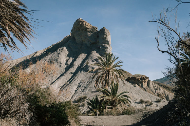 SPAIN Arid Climate Beauty In Nature Day Desert Geology Landscape Low Angle View Mountain Nature No People Outdoors Palm Tree Physical Geography Plant Rock - Object Rock Formation Scenics Sky Tabernas Tabernas Desert Tranquil Scene Tranquility Tree Stay Out