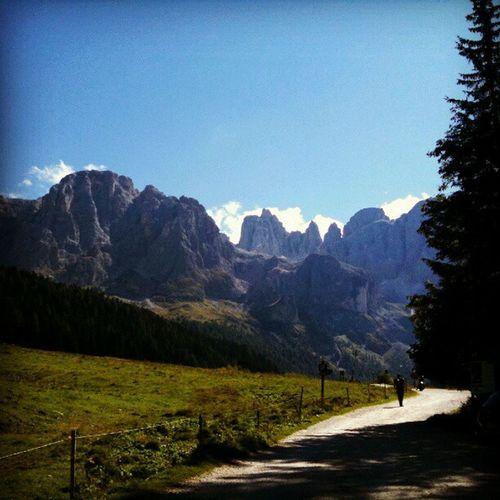 Trentinoaltoadige Mountain Montagna Italy Italia Summer Estate Strada Street Walk Walking Camminata Percorso