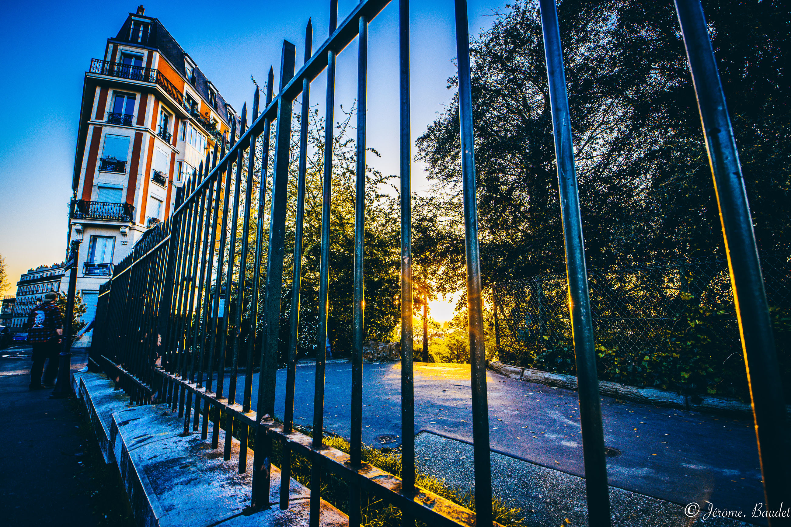 architecture, building exterior, tree, built structure, sky, nature, city, plant, street, railing, water, sunset, no people, barrier, transportation, sunlight, outdoors, footpath, building