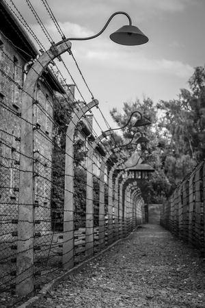 Auschwitz Auschwitz  Auschwitz Birkenau Architecture Built Structure Building Exterior Sky The Way Forward Building Tree Plant No People Day Nature Direction Cloud - Sky Footpath Outdoors Street Diminishing Perspective In A Row Lighting Equipment Wall