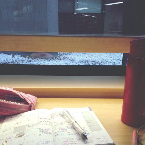 図書館 雪 仙台 東北
