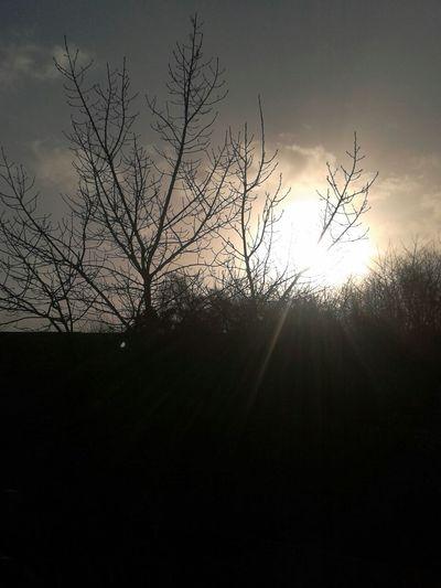 Sun :)