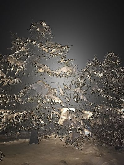 Ghost Snow. No People Winter Snow Covered Backgrounds Fine Art Photography IPhoneography IPhone Only
