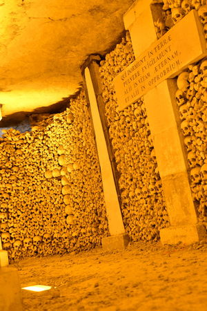Bones Darkness Paris Paris, France  Sightseeing Travel Traveling Available Light Bone  Catacomb Catacombe Catacombs Hq Iso100 Katakomben Knochen Scary Scary Places Sceleton Schädel Skull Skulls Skulls And Bones Travel Destinations Under The City