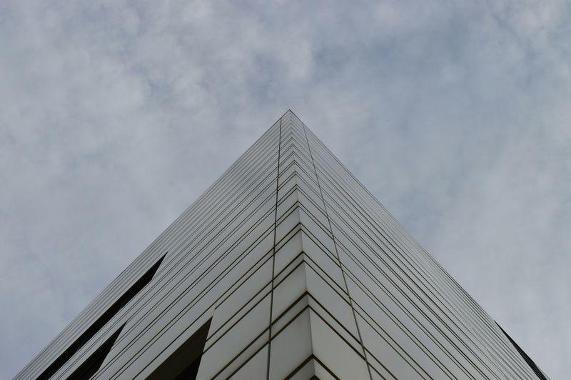 Low Angle View