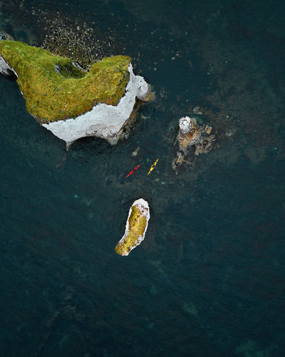 Floating On Water Tranquility Beauty In Nature Outdoors Nature High Angle View Water Sea Marine Cliff Rock Kayak Sea Sport Drone  Drone Photography Drone Shot Top Down View Day summer sports Green Color Grass Sea Shore Dorset