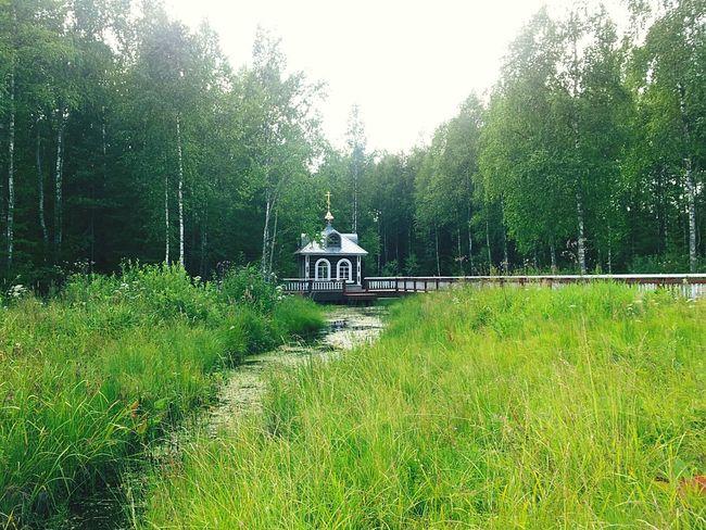 Source of riv. Volga Исток Волги исток река Волга великая русская Россия Source River Volga Great