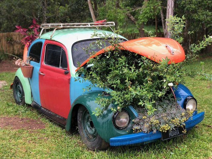 Still a VW,
