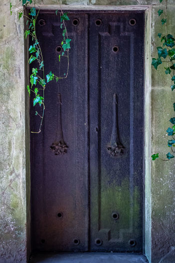Entrance Door No People Closed Old Security Protection Day Wood - Material Close-up Safety Metal Blue Weathered Green Color Full Frame Architecture Wall - Building Feature Outdoors House Highgate Highgate Cemetery Ivy Green