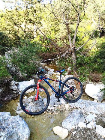 Cycling Cubebikes Cyprus Kyrenia